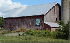China Aster on Scenic Valley Farm's barn, Hwy 289 in Middle Stewiacke, Nova Scotia. The barn quilt is a copy of a fabric quilt made by Hazel Dickey, a previous owner.