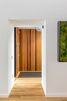 Image Credit: Dan Armstrong Contemporary Front Doors, Contemporary Interior, Wood Architecture, Box Houses, Landscape Plans, Interior Trim, Visionary Art, Tall Cabinet Storage, Dan