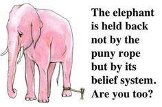 https://ambikadevendra.files.wordpress.com/2015/04/elephant-chained.jpg