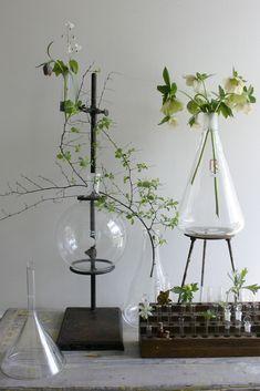 glassworks..