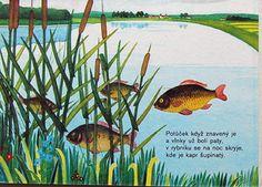 Majka Barešová : Jak vzniká řeka ... Illustration Gabriela Dubská