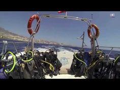 Puertito de Adeje auf Teneriffa - die ideale Bucht für Tauchanfänger Spain, Teneriffe, Diving, Things To Do, Sevilla Spain, Spanish
