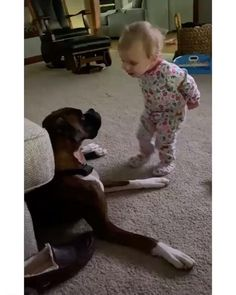 Cute Funny Babies, Cute Funny Animals, Cute Baby Animals, Funny Cute, Funny Kids, Cute Kids, Dogs And Kids, Animals For Kids, I Love Dogs