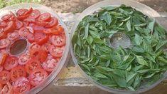 Shrimp, Cabbage, Meat, Vegetables, Food, Essen, Cabbages, Vegetable Recipes, Meals