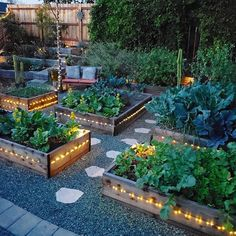 Garden layout vegetable garden raised bed garden layout garden bed layout fr bed garden layout raised vegetable 4 best ways to fill a raised garden bed for cheap! Home Garden Design, Modern Garden Design, Diy Garden, Balcony Garden, Modern Design, Backyard Garden Design, Cool Garden Ideas, Backyard Layout, Garden Tips