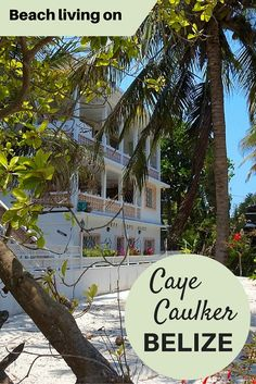 Adoration 4 Adventure's recommendations for beach living at Tree Tops Guesthouse, Caye Caulker, Belize. A tranquil retreat just meters from the waterfront.