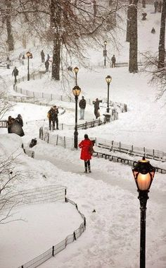 I love Central Park in Winter.Snowy Central Park ~ New York New York City, Ville New York, A New York Minute, Central Park Nyc, Winter Scenery, Snow Scenes, Belle Photo, Empire State Building, Wonderland