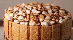 S'mores Cheesecake  - Delish.com