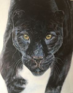 """Athena"" Panther, Artworks, Animals, Animales, Animaux, Panthers, Animal, Animais, Art Pieces"