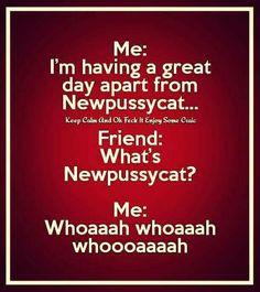 Funny Irish Jokes, Short Jokes Funny, Stupid Jokes, Funny Jokes For Adults, Dad Jokes, Funny Me, Hilarious, Badass Quotes, Funny Quotes