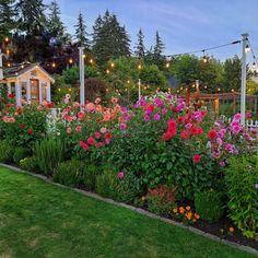 Garden Posts, Lawn And Garden, Home And Garden, Cut Flower Garden, Flower Farm, Cut Garden, Farm Gardens, Outdoor Gardens, Amazing Gardens