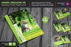 Animal Magazine/ Newsletter by Layout Design Ltd on @creativemarket