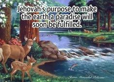 Life In Paradise, Jehovah, Earth, Instagram Posts, Father, God, Pai, Dios, Allah