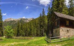 Lataa kuva Italia, Alpeilla, kesällä, vuoret, kota, metsä