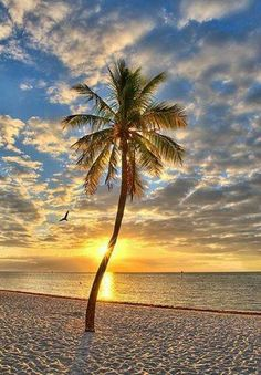 Sunrise in Key West