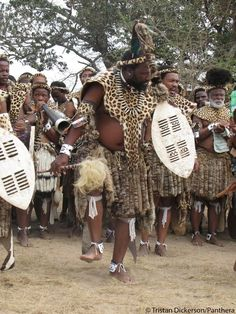African Culture, African History, South African Tribes, Afro, Zulu Warrior, African Traditional Wear, African Dance, African Accessories, Kwazulu Natal