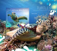 Post stamp Maldives MLD 14806 bTurtles (Chelonia mydas)