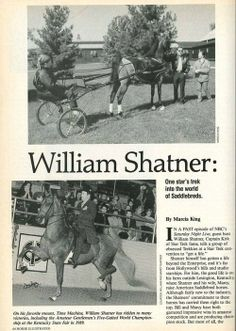 showjumpingprincess:  itmightpossiblybetimeformiracles:  YOU GUYS  SHATNER BREEDS AND SHOWS SADDLEBREDS  Hallie did u see this  Sorry people but i strongly dislike mr. Shatner