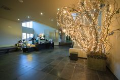 Bar Ponton Resorts, Oasis, Chandelier, Ceiling Lights, Bar, Lighting, Home Decor, Morocco, Green