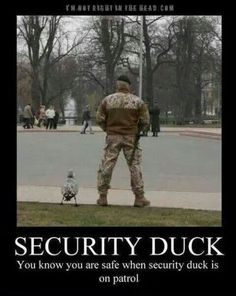 Security Duck...lol