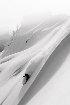 The Daily Pow: Do you choose your line or does it choose you? http://adv-jour.nl/WsSHSt