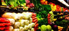 Food Sense & Sensitivity Consulting | Making Food Make Sense.