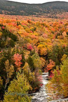 Reservoir-in-Autumn