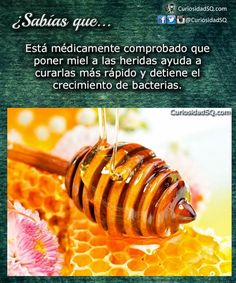 ¿Sabías que? esta medica-mente comprobado que poner miel a las heridas ayuda a curarlas mas rápido y detiene el crecimiento de bacterias.