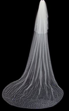 Cathedral Length Two Tier Blusher Wedding Veil with Crystal Edge and Scattered Crystals, White Diamond Ivory Veil, Style 1038 'Yelena' Trendy Wedding, Luxury Wedding, Dream Wedding, Wedding Ideas, 2017 Wedding, Ivory Wedding, Wedding Things, Wedding Stuff, Wedding Planning