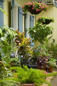 planter in courtyard garden by designer charlotte rowe just simple