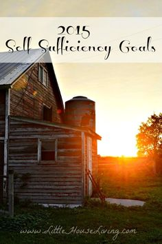 Self Sufficiency Goals 2015 - Little House Living