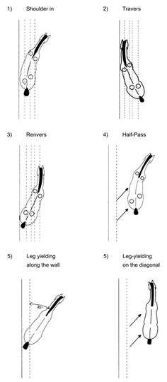 Laterals