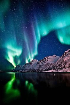 Northern Lights Norway, See The Northern Lights, Landscape Photography, Nature Photography, Northen Lights, Nature Pictures, Belle Photo, Night Skies, Beautiful Landscapes