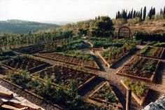 Raised beds in geometric vegetable garden