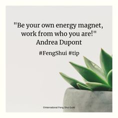 Be your own energy magnet, work from who you are! Feng Shui Tips, In This World, Tips, Home