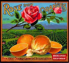 Love these vintage original orange crate labels for Rose Brand Oranges. They make me want to bite into a nice juicy orange in the California countryside. Vintage Labels, Vintage Ads, Vintage Posters, Vintage Packaging, Vintage Ephemera, Retro Advertising, Vintage Advertisements, Orange Crate Labels, Vintage Crates