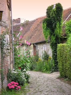 Hollyhocks and Cobblestone Lane
