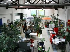 Coworking in Vienna ::: Deskmag - The Coworking Magazine love all the plant space