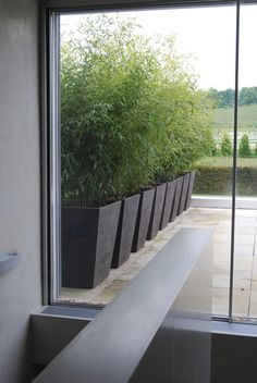 Bamboo planter idea from RZ Atelier Vierkant Bambusi. Back Gardens, Small Gardens, Outdoor Gardens, Outdoor Planters, Big Planters, Metal Planters, Indoor Outdoor, Garden Privacy, Backyard Privacy