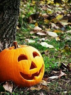 This is the kind of pumpkin carving I like! A traditional, not so scary, Jack-o-Lantern! pumpkins classic The Sleepy Hollow Image Halloween, Halloween Jack, Holidays Halloween, Halloween Pumpkins, Halloween Crafts, Happy Halloween, Halloween Decorations, Funny Halloween, Halloween Pictures