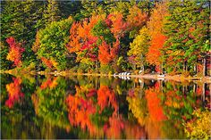 Autumn in New Hampshire.