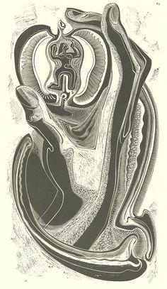 Gertrude-Hermes,-Adam-&-Eve,-1933,-wood-engraving,