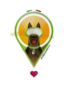 Gracias, por salvar vidas! #fuerzamexico #dog #heroe #vida #mexico #brigadista #rescate #sismo #amigo #frida #Drago #mx #perro #rescate #marina #apoyo #unidospprmexico #lovemexico