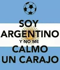 LOL Translation I'm Argentine And I'll be Damned if I Calm Down.Rightfully so. International Soccer, Brazil World Cup, Funny Memes, Jokes, Funny Bunnies, Calm Down, Spanish Quotes, Lionel Messi, Keep Calm