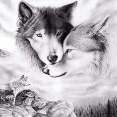 Diy Diamond Painting Animal Wolf Love Cross-Stitch Diamond Embroidery Diamond Mosaic Crafts Needlework Home Decoration Wolf Photos, Wolf Pictures, Pictures Images, Mosaic Pictures, Free Pictures, Wolf Love, Wolf Tattoos, Tatoos, Wolf Spirit