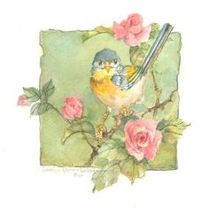 """This item is a signed, original watercolor by Carolyn Shores Wright and is part of the """"Window on the World"""" series. Watercolor Bird, Watercolor Paintings, Bird Illustration, Vintage Birds, Little Birds, Bird Prints, Bird Art, Beautiful Birds, Painting & Drawing"""