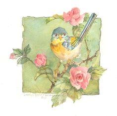 Parula Warbler 8.5 x 8 original watercolor | CShoresInc - Painting on ArtFire