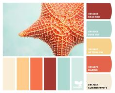 Chip It! by Sherwin-Williams – Home