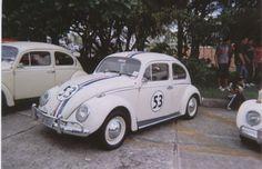 Ases-do-volante-dia-do-fusca-4-.jpg (907×587)