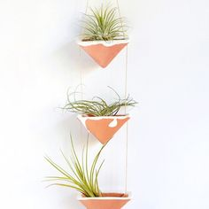 House your air plants with this stylish clay hanging planter!